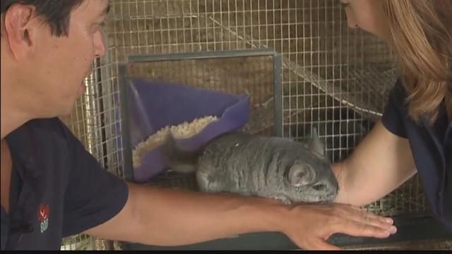 Exploring with Aloha: Three Ring Ranch Exotic Animal Sancutary