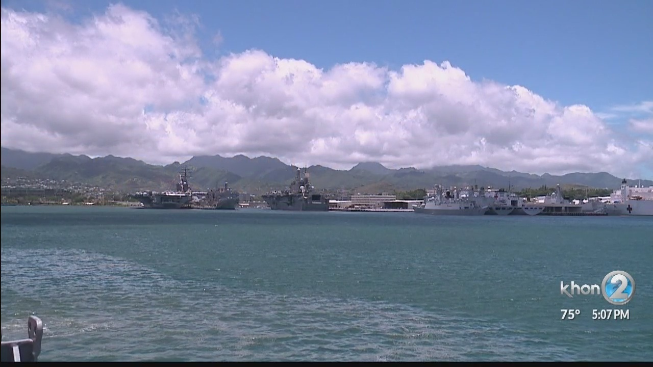 Native oysters making a return to Pearl Harbor