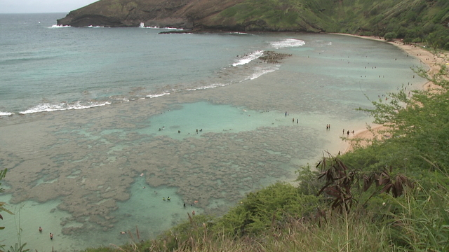 Hanauma Bay reopens after bacteria levels in the water return to normal levels