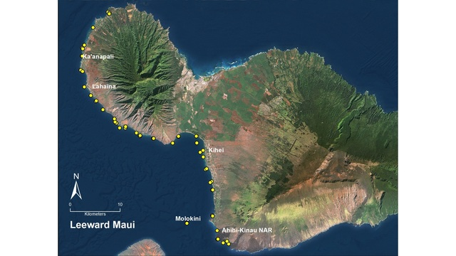 Maui's most resilient reefs found in State marine managed areas