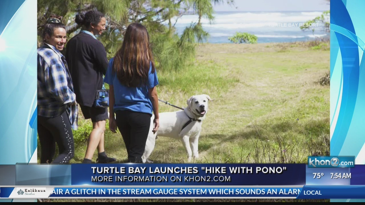 """""""Hike with Pono"""" at the Turtle Bay Resort"""